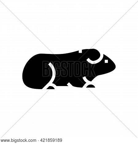 Guinea Pig Pet Glyph Icon Vector. Guinea Pig Pet Sign. Isolated Contour Symbol Black Illustration