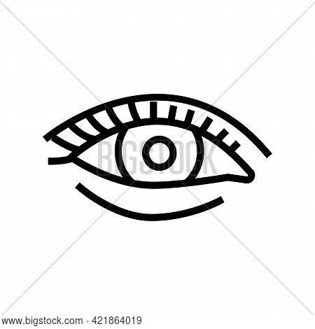 Natural Woman Eyelashes Line Icon Vector. Natural Woman Eyelashes Sign. Isolated Contour Symbol Blac