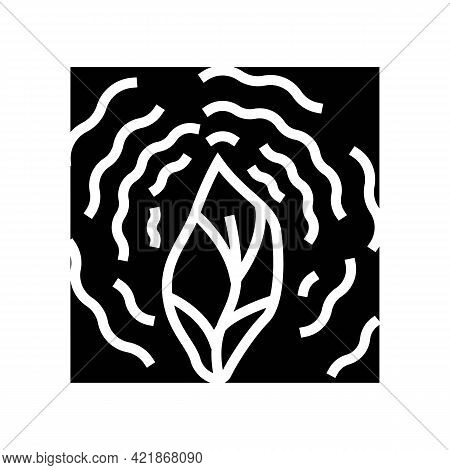 Dry Leaf Phytotherapy Glyph Icon Vector. Dry Leaf Phytotherapy Sign. Isolated Contour Symbol Black I