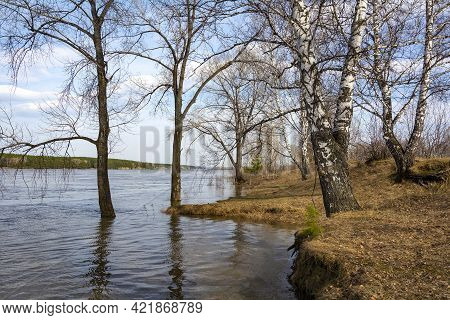The Bank Of The Tom River, Flooded During The Spring Flood, Kemerovo Region-kuzbass