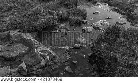 Black And White Rocky Coast Detail