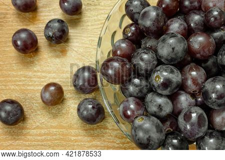 View Of Grapes Of Muscat Hamburg Variety (otherwise Known As 'paneer' Grapes) . Common Grape Variety