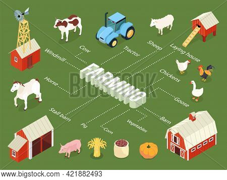 Farming Isometric Flowchart With Farmhouse Stall Barn Chickens Laying House Tractor Livestock Vegeta