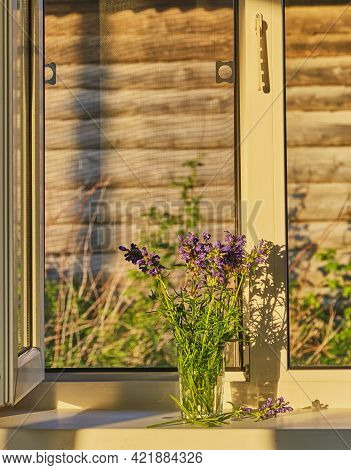 Summer Composition. A Bouquet Of Violet Wildflowers Lit By Sunlight On A White Window Sill In A Farm