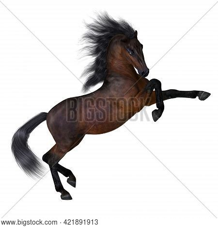 Bay Horse 3d Illustration - Bay Is A Common Horse Color On Many Different Breeds With A Deep Reddish