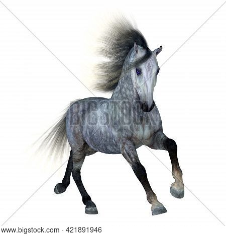 Dapple Grey Horse 3d Illustration - The Dapple Grey Is A Coat Color Of Many Different Breeds Of Hors