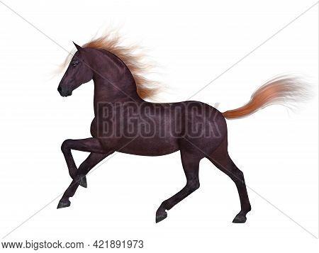 Liver Chestnut Horse 3d Illustration - The Liver Chestnut Is A Coat Color Of Many Different Breeds O