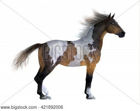 Wild Mustang Stallion 3d Illustration - The Mustang Is A Wild Free-roaming Horse Of The Western Unit