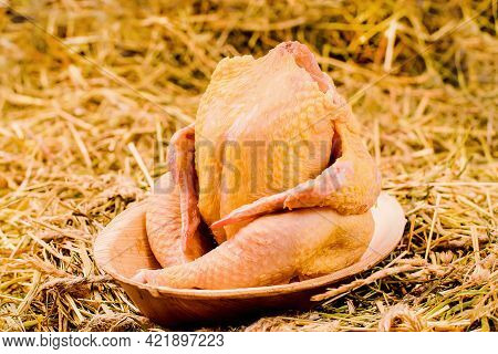 Free Range Farm Whole Chicken.raw Whole Chicken On A Cardboard Plate On A Background Of Dry Grass.ec