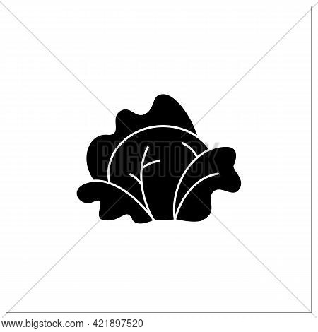 Cabbage Glyph Icon. Fresh Leaf Vegetable. Edible Plant. Vegetarian, Healthy Nutrition.agriculture Co
