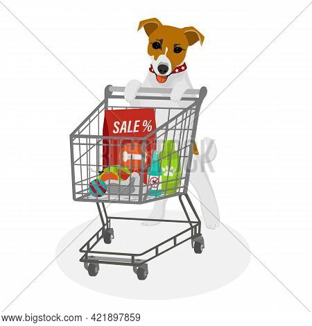 Dog Jack Russell Terrier With A Shopping Cart With Zoo Goods At A Discount. Pet Shop Accessories And