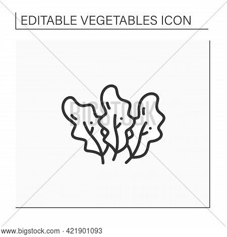 Spinach Line Icon. Fresh Leaf Vegetable. Edible Plant. Vegetarian, Healthy Nutrition.agriculture Con