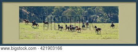 Framed Image Of Men On Horseback Pursuing Wild Horses As They Race In The Sunshine Across A Beautifu