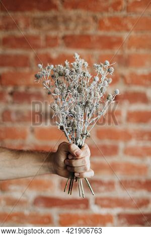 Man holding a bouquet of  dried blue thistle