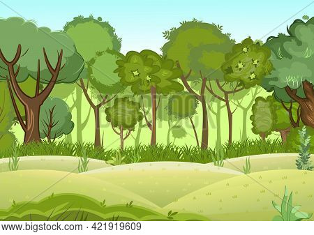 Summer Forest Landscape. Light Foggy Thickets. Dense Foliage. Hills Meadow At The Edge. View Of Gree