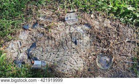 Broken glass beer bottle shattered in bushland