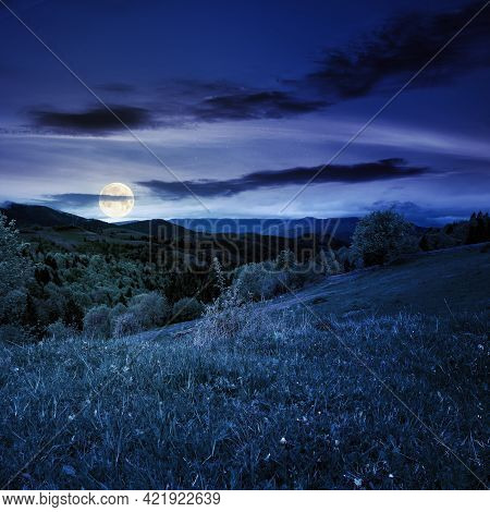 Rural Mountain Landscape In Spring At Night. Grass And Trees On Hills Rolling Through The Green Vall