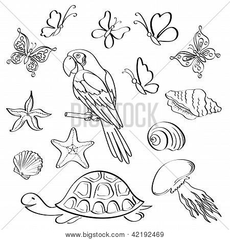 Set of exotic animals and insects, black contour on white background. Vector poster