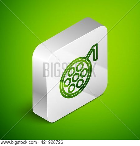 Isometric Line Surgery Lamp Icon Isolated On Green Background. Silver Square Button. Vector Illustra