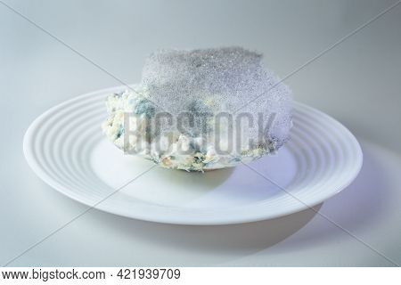 On A White Plate With Cottage Cheese Is Spoiled Cottage Cheese. You Can See The Green Mould On It.