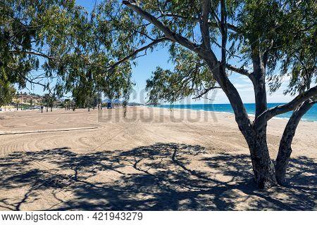Empty Beach Of Bolnuevo, Mazarron, Murcia, Spain. Tree Giving Shade On A Beautiful Sunny Day With Th