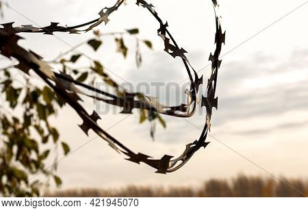 Barbed Wire Against The Gloomy Sky. The Concept Of Restriction Of Freedom, Social Distancing, Loneli