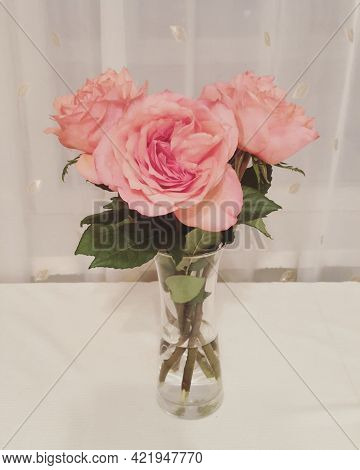 Beautiful Bouquet Of Pink Roses In A Vase