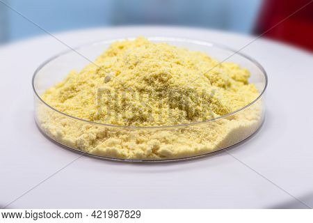 Sulfur Powder In Petri Dish, Chemical Substance For Industrial Use