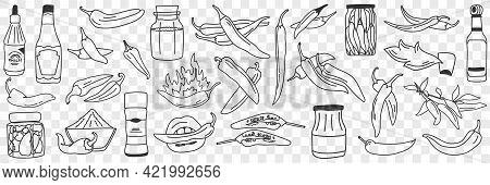 Cooked Chilli Pepper Doodle Set. Collection Of Hand Drawn Various Types Of Cooked Preserved Pickled