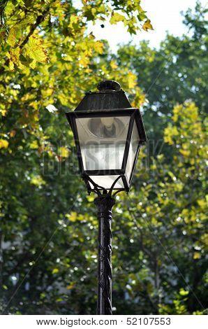 Lantern On A Street