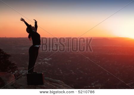 Silhouette Of Business Woman