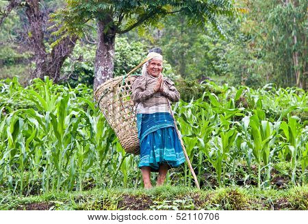 POKHARA - MAY 23: Nepalese women carry things in big basket at the traditional way, on May 23, 2013 in Pokhara, Nepal.