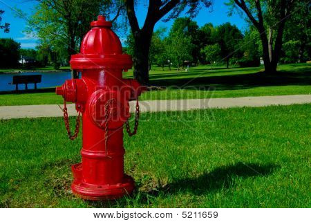 Red Fire Hydrant In Park