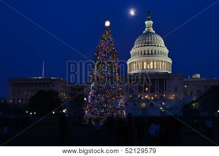 US Capitol and traditional Christmas tree at night - Washington DC, United States