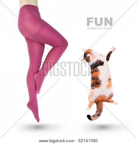 Crazy fun. Woman and her cat jumping. poster