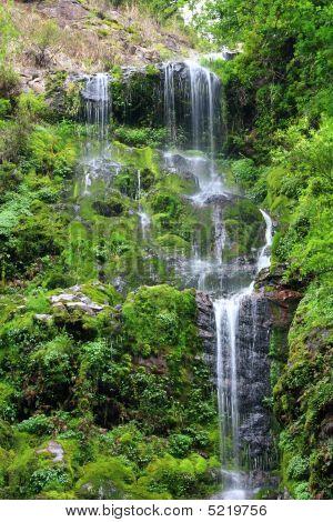 Beautiful Streams And Waterfalls