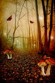 Red spotted mushrooms in a tale forest,fantasy picture poster