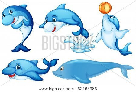 Illustration of the playful dolphins on a white background