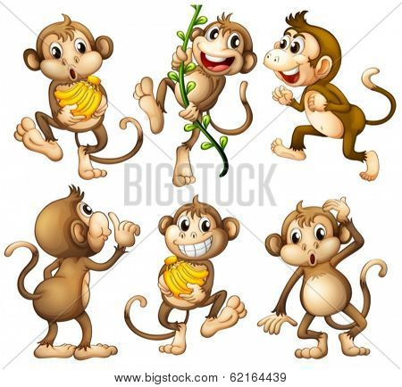 Illustration of the playful wild monkeys on a white background