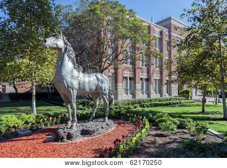 University Of Southern California Traveler Horse Statue