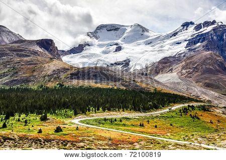 Landscape View Of Columbia Glacier In Jasper Np, Canada