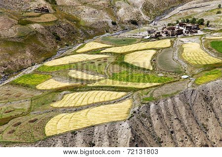 Skyumpata Village - Beautiful Village In Zanskar Trek