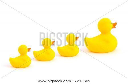 Yellow Toy Ducks