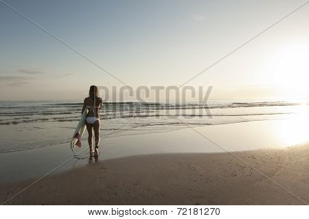 Young attractive blonde surfer girl on beach