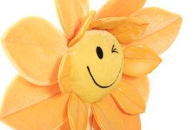 Happy Flower Close-up