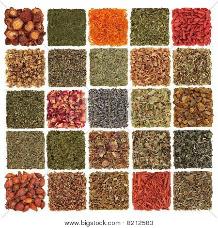 Dried Herb, Spice, Fruit and Flora
