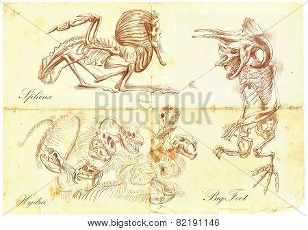 An Hand Drawn Vector: Sphinx, Bigfoot, Hydra
