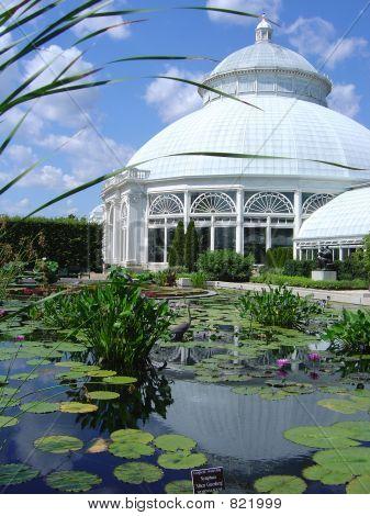 NY Botanical Gardens pool