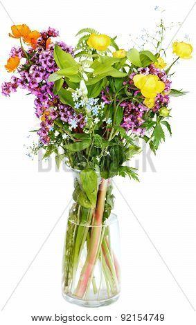 Summer Fresh Natural Flowers In Glass Vase