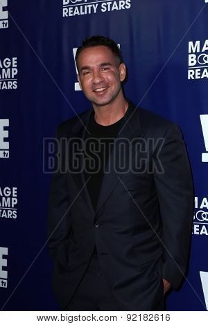 LOS ANGELES - MAY 28:  Mike Sorrentino at the WE tv's
